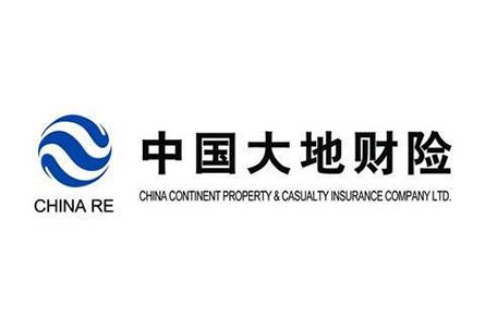 中国大地财险